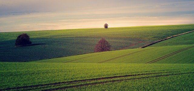 קרקעות להשקעה – איך בוחנים אילו קרקעות יכולות להתאים לנו?