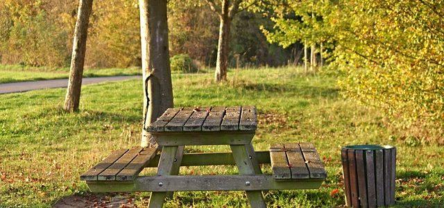 שולחנות פיקניק מעץ – כיצד רוכשים שולחן בצורה נכונה